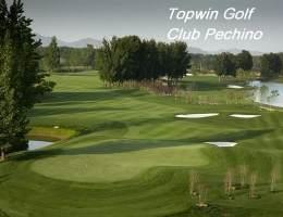 Topwin