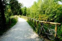 Alzaie-del-Sile-a-Treviso-Silea-Casier-Casale-Foto-33