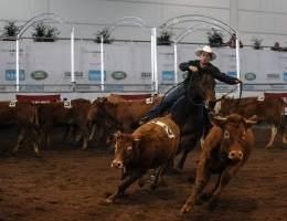 Westernshow