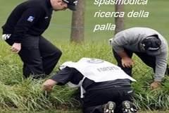 Palla-Persa