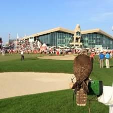 Abu_Dhabi_Golf_Falcon