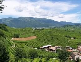 panoramica colline Prosecco foto A. Tonetto